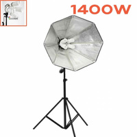 4 Bulb 1400W Continuous Octagon Soft Box Pack