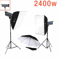 2400W Digital Studio 2 Strobe Kit LITE